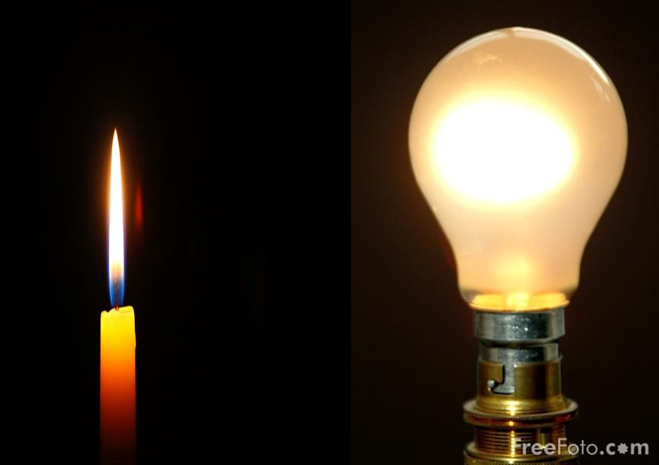 M bioserviceS | On Candles and Light Bulbs